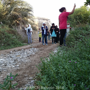 Participants trying-out the iNaturalist app during a guided walk of the Bahrain Fort surrounding agricultural lands